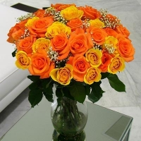 3 Dozen Orange & Yellow Roses Baby Breath
