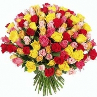 100 Multicolor Roses Bouquet