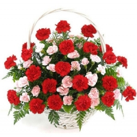 Carnations Wishes Basket