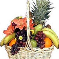 Fruit's gift Basket