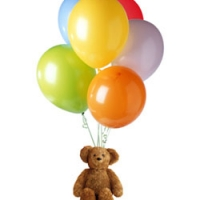 balloon w/bear 2