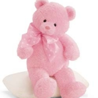 24 inches Pink Teddy