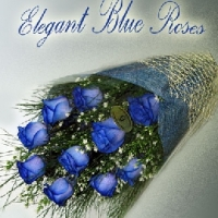 Elegant blue rose